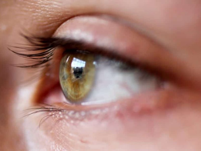 august-is-national-eye-care-month-children-s-eye-health-safety-month-children-are-susceptible-to-a_t20_lL9Bjb