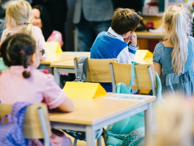 education-school-school-kids-kids-classroom-classroom-classroom-students-students-in-the-classroom_t20_OxlRkE